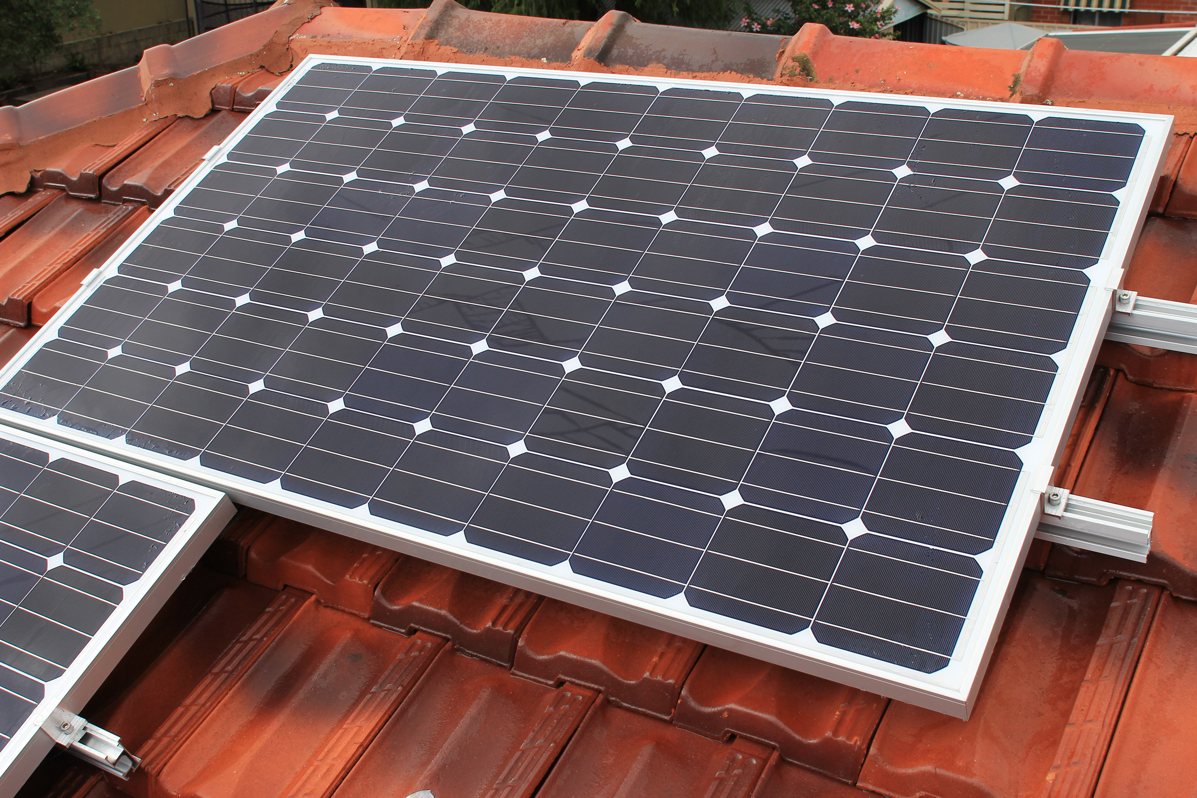 Snail Trail Contamination Of Pv Panels Solar Pv Discussion